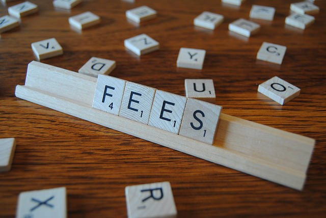 Travel Agency Fees: A Professional Approach